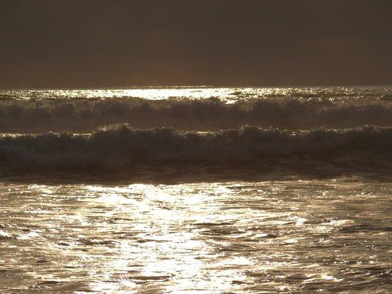 Finca Punta Ayampe: olas