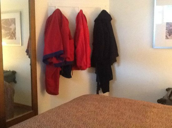 BEST WESTERN Jasper Inn & Suites: No closet, no dresser, just hooks to hag clothes