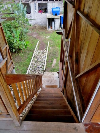 Rubby Hostal: Stairs leading down to garden and kitchen. Paths are still being worked on.
