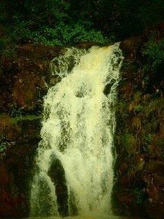 Waimea Valley: Waimea Fall