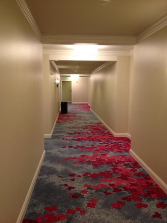 The Ritz-Carlton, Grand Cayman: Hallway, very wide and colorful