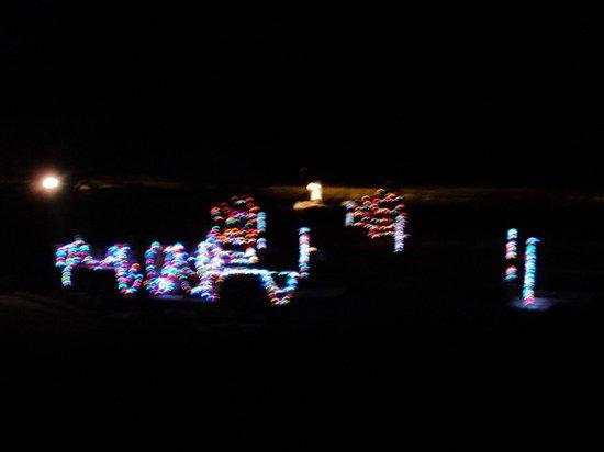 Canyon Motel & RV Park : Christmas lights on property