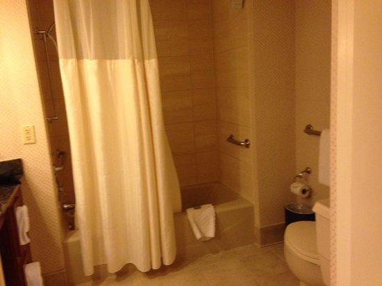 Embassy Suites by Hilton Crystal City - National Airport : Bathroom