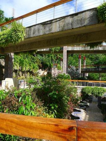 Jade Mountain Resort: Grounds