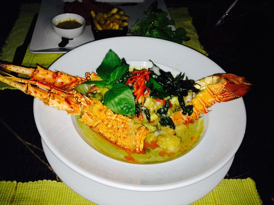 The Farmer Restaurant and Bar : Lobster in green curry!