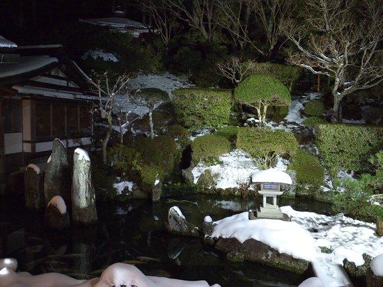 Ichijoin : garden by night