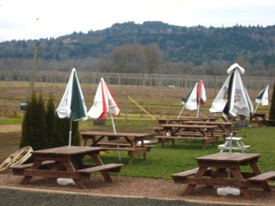 Rogue Farms Micro Hopyard: Picnic area