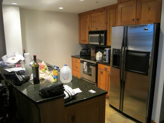 First Tracks Lodge: Kitchen in our apartment