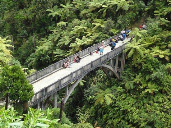 Bridge to Nowhere Tours: Looking down on the Bridge to Nowhere