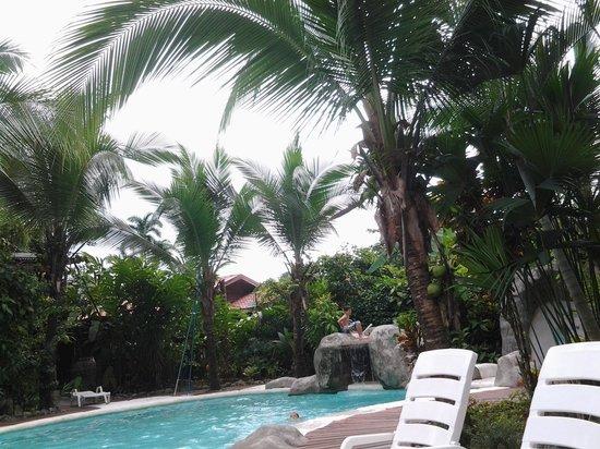 Casa Renada: piscina