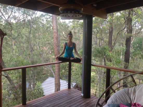 Billabong Retreat Sydney: Lotus