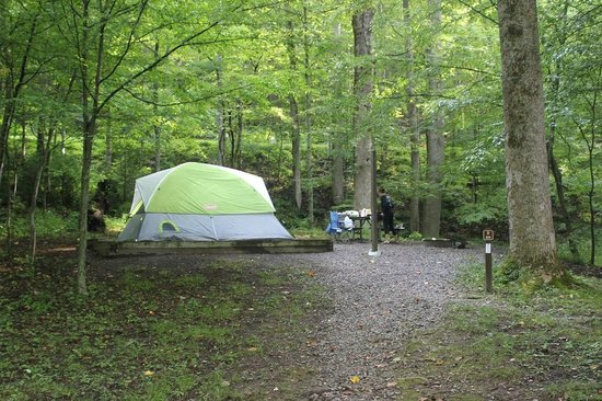 Elkmont Campground: Good camp site.