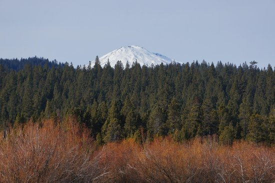 Sunriver Resort: Mountain views from property