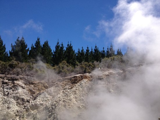 Hells Gate - Geothermal Walk