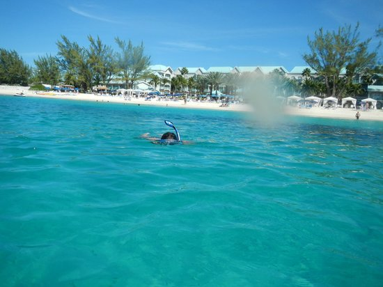 The Westin Grand Cayman Seven Mile Beach Resort & Spa : view of hotel from ocean