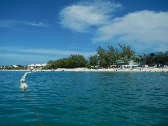 The Westin Grand Cayman Seven Mile Beach Resort & Spa : hotel