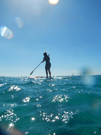 The Westin Grand Cayman Seven Mile Beach Resort & Spa: paddle boarding
