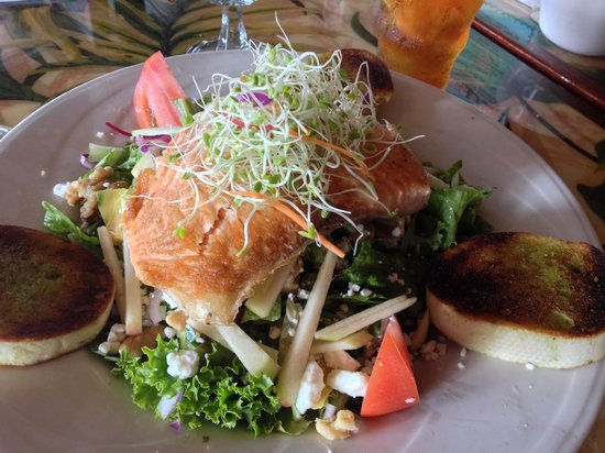 Ponds: Salmon salad