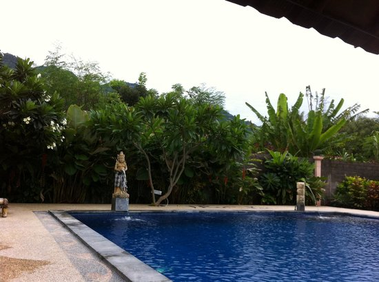 Kubuku Ecolodge and Resto: Pool Side