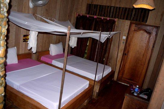 Tree Top Eco-Lodge : Cute twin room