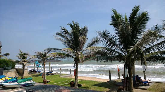 ChamPa Resort and Spa: Palm trees at beach front