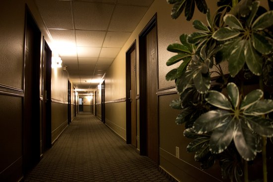 Super 8 Moscow : Hallway