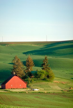 Super 8 Moscow: The Palouse