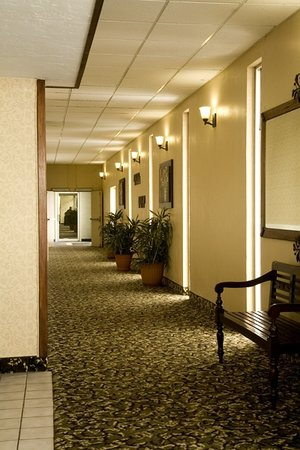 FairBridge Inn & Suites Idaho Falls: Hallway