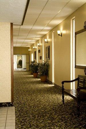 FairBridge Inn & Suites Idaho Falls : Hallway
