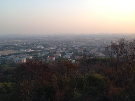 Sheshan Forest Park: Blick vom Gipfel