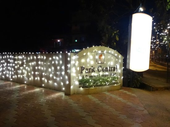 Park Central: Christmas Decoration 2