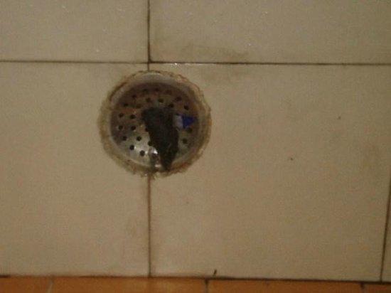 Janak Palace: uncleaned bathroom