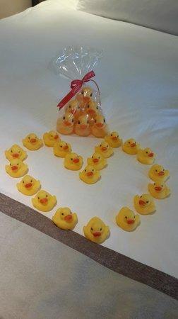 Chateau de Chine Hotel Kaohsiung : 酒店安排的小鴨專案,讓孩子們都很開心!