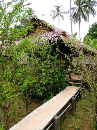 Mook Lanta Resort: Bungalow with fan