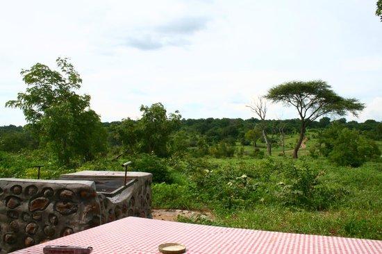 Senyati Safari Camp: View from Campsite 17