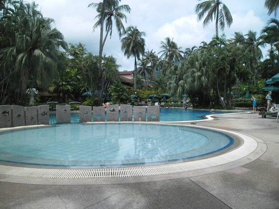 Patong Merlin Hotel : pool