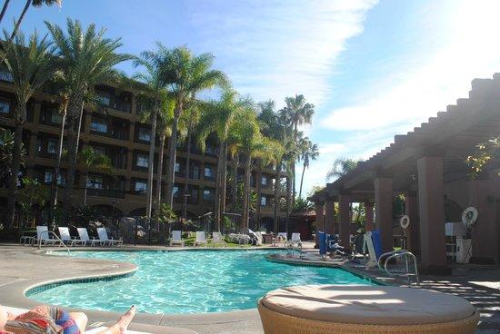 Hotel Menage: pool side