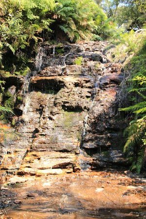 Wentworth Falls: Waterfall