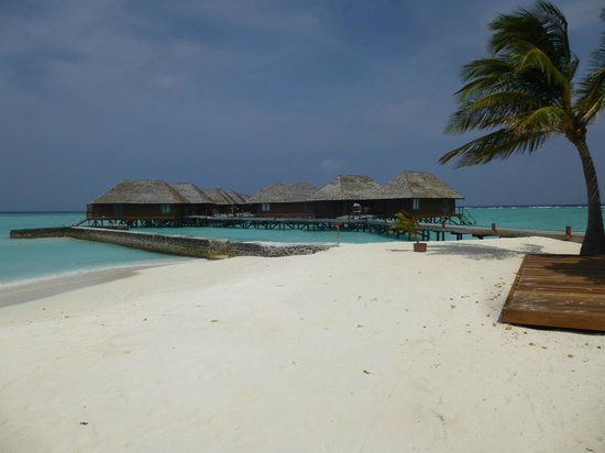 Veligandu Island Resort & Spa : water villas