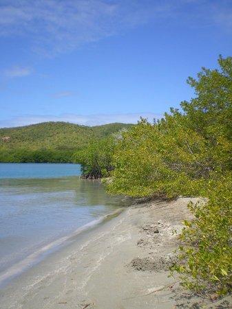 Caravelle Peninsula: La Baie des Trésors