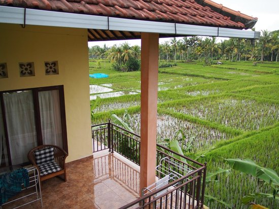 Bali Suksma Villa: from viewing deck