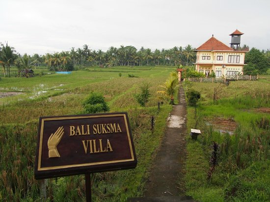 Bali Suksma Villa: from walking trail