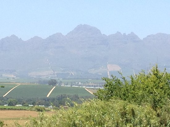 Neethlingshof Estate: View