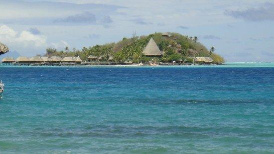 Sofitel Bora Bora Marara Beach Resort: вид из номера