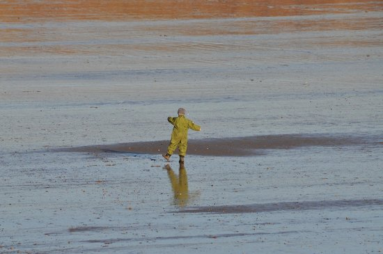 Filey Beach : Just couldn't resist- isn't he enjoying himself!
