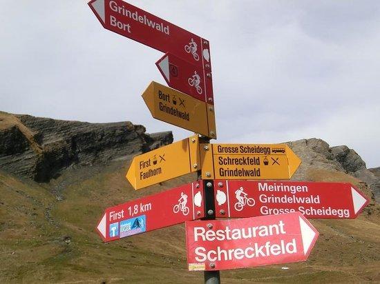 Grindelwald, İsviçre: 道標