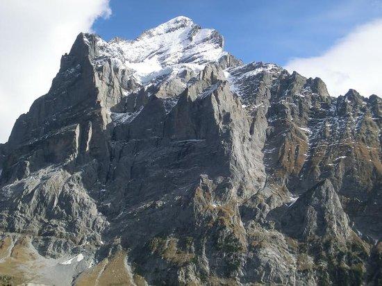 Grindelwald, İsviçre: Wetterhorn 2