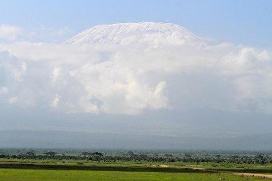 Tortilis Camp: Kilimanjaro