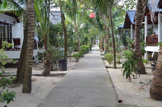 Marina Beach Resort: Дорожка от моря
