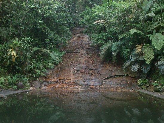 Vista Alegre Retreat: Uma vista de piscina natural de uma das casas